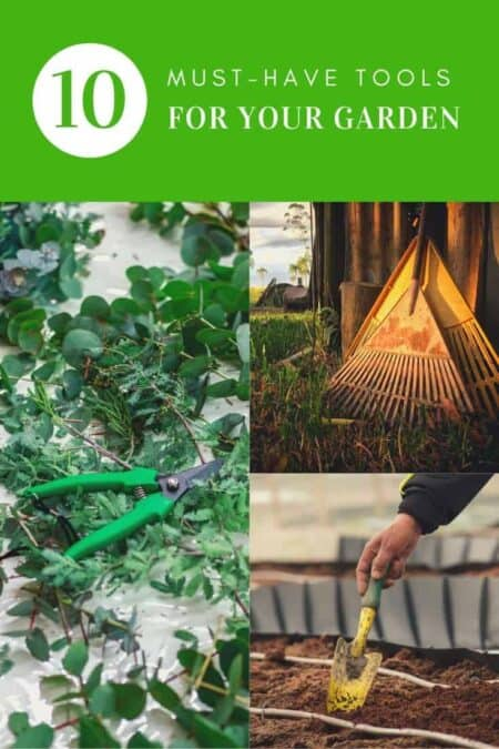 10 Must-have tools for your garden 1 - Garden Tools - 1001 Gardens