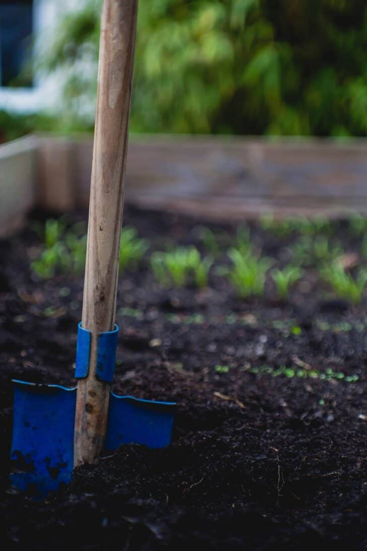 10 Must-have tools for your garden 13 - Garden Tools