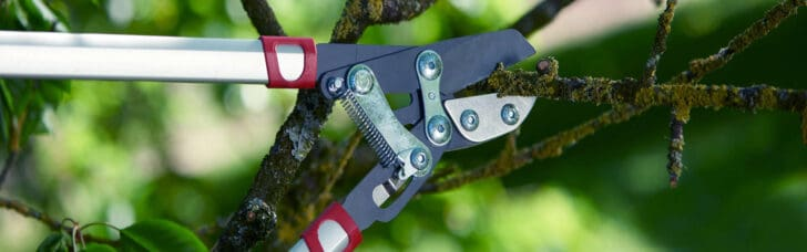 10 Must-have tools for your garden 29 - Garden Tools