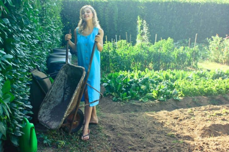 10 Must-have tools for your garden 33 - Garden Tools