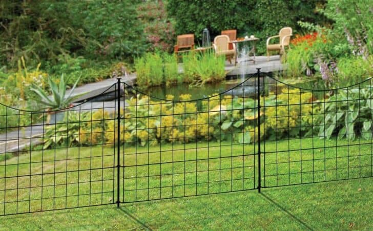 9 Tips To Dog Proof Your Garden 2 - Garden Decor - 1001 Gardens