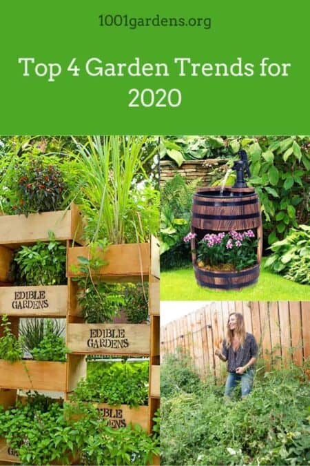 Top 4 Garden Trends for 2020 9 - Flowers & Plants