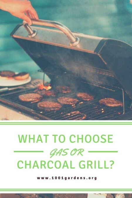 What To Choose: Gas Or Charcoal Grill? 1 - Fire Pits & Grills - 1001 Gardens