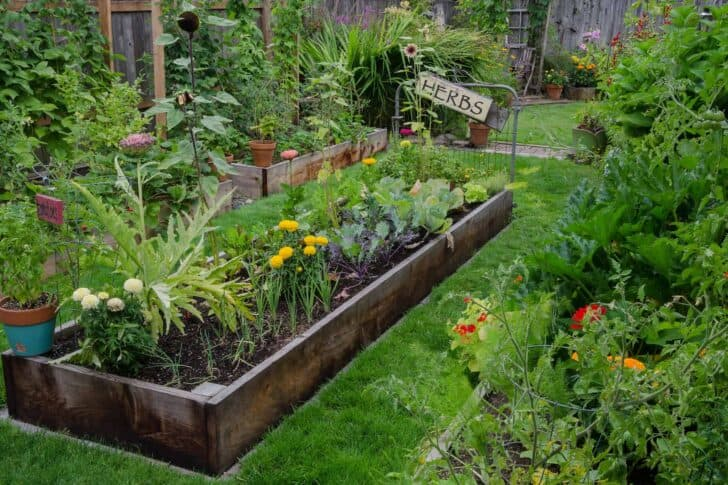 Flower garden ideas for small yards 87 - Flowers & Plants