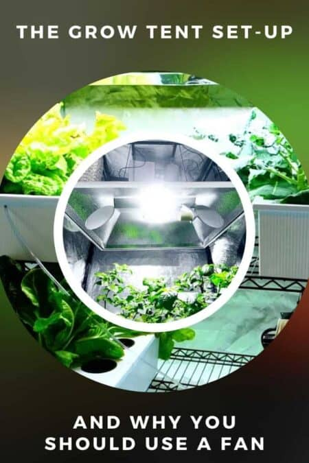 The Grow Tent Set-Up and Why You Should Use a Fan 1 - Urban Gardens & Agriculture - 1001 Gardens