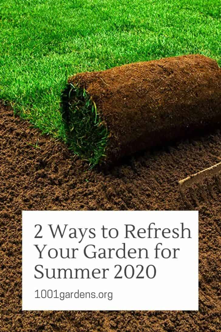 2 Ways to Refresh Your Garden for Summer 2021 1 - Landscape & Backyard Ideas