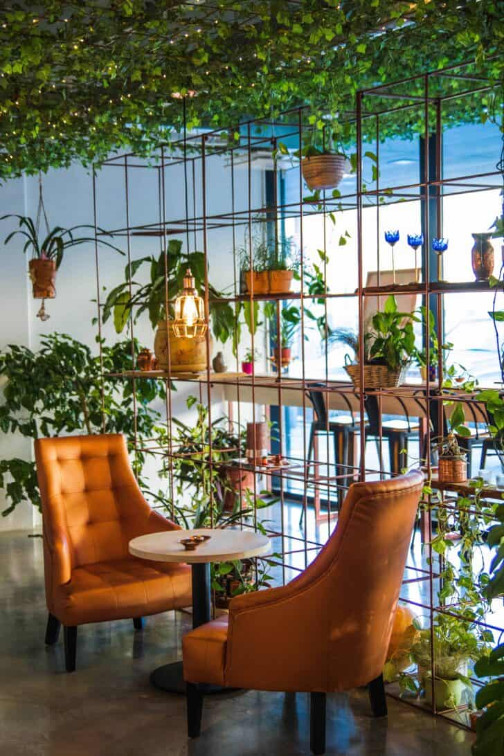 Best Urban Jungle Interior Style Ideas
