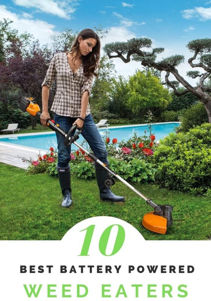 10 Best Cordless Battery Powered Weed Eater of 2019
