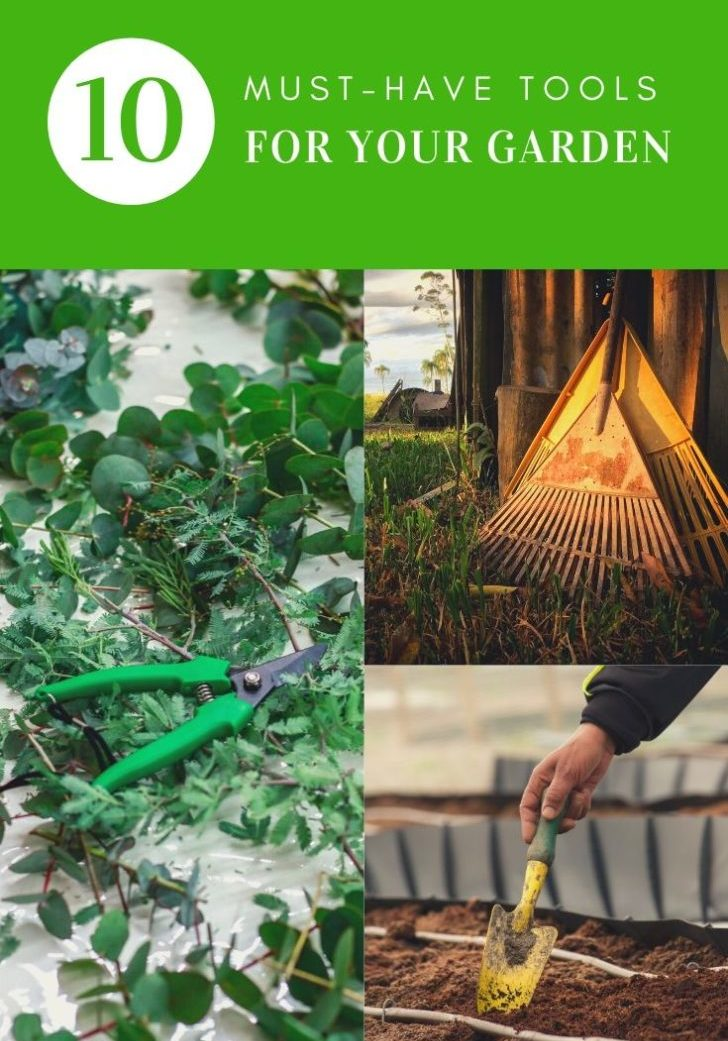 10 Must-have tools for your garden