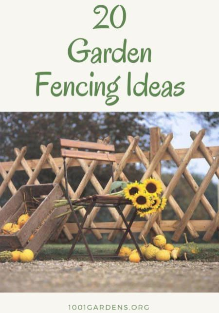20 Cheap Garden Fencing Ideas