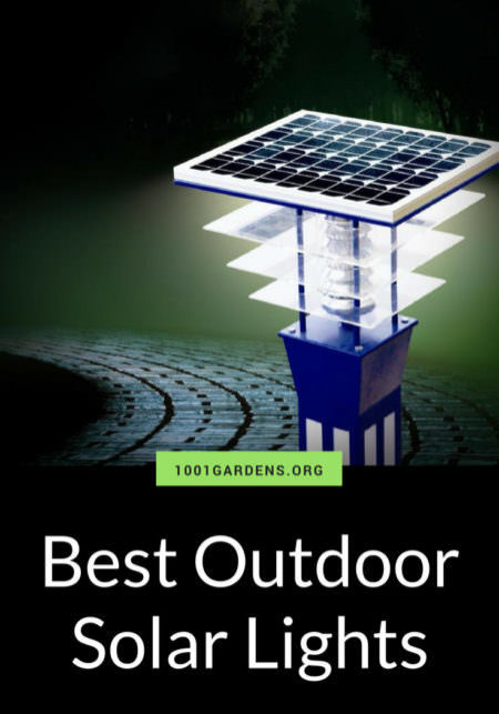 1001gardens.org-best-outdoor-solar-lights-for-your-garden-01