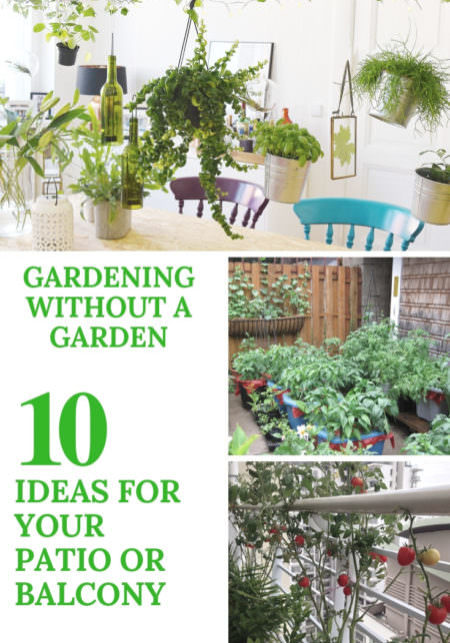 1001gardens.org-gardening-without-a-garden-10-ideas-for-your-patio-or-balcony-09