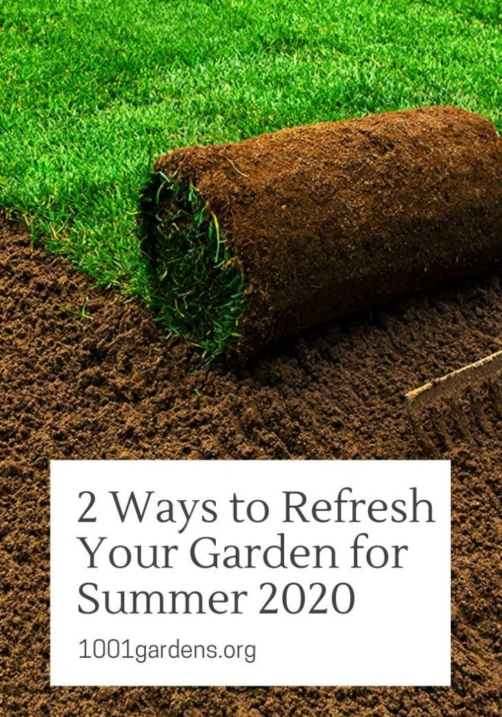 2 Ways to Refresh Your Garden for Summer 2020