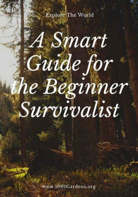 A Smart Guide for the Beginner Survivalist