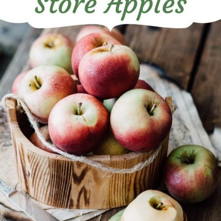 Best Way to Store Apples