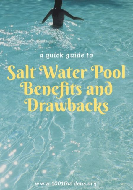 Salt Water Pool Benefits and Drawbacks
