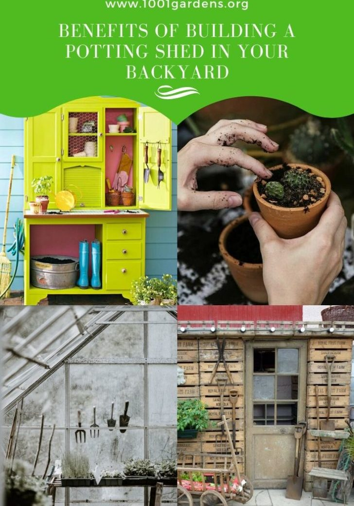 Benefits Of Building A Potting Shed In Your Backyard