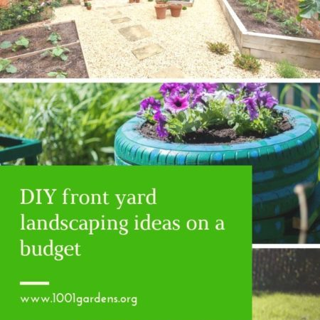 DIY front yard landscaping ideas on a budget-10