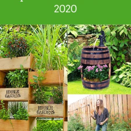 Top 4 Garden Trends for 2020
