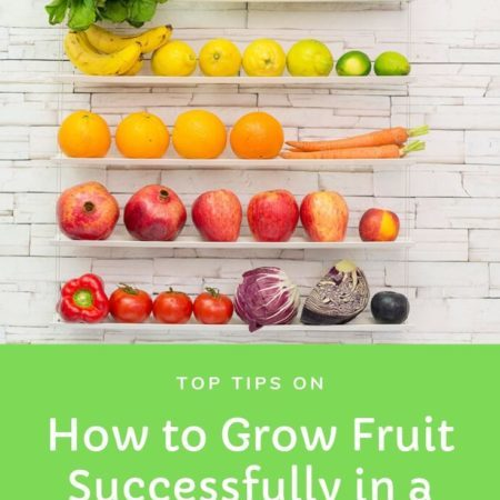 How to Grow Fruit Successfully in a Small Back Garden
